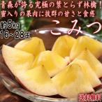 こみつ 葉とらず林檎 約5kg 16〜28玉 青森県産 JA津軽みらい 蜜入りの果肉に高い糖度と濃厚な味!お得なブランドりんご