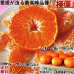 愛媛県産 かんぺい 約2.5kg みかん類 甘平 柑橘系 加温から露地栽培 簡易梱包 サイズ指定不可 訳あり 家庭用 タンゴール種