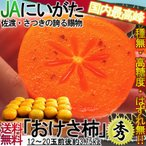 おけさ柿 新潟産JA佐渡島はもち 種無し柿 3.75kg 秀品限定 刀根柿 平種無柿 たねなし柿 高糖度