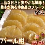 パール柑 大橘 約9kg 熊本県産 贈答規格 袋掛け品 個人農家産 ギフトにも人気のブランドフルーツ!爽やかな風味と上品な甘さの特産品