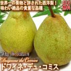 ドワイネ・デュ・コミス 西洋梨 約4kg 12玉入り 新潟県産 贈答可能 果物の王様と評される絶品!希少で味わい抜群の洋ナシ