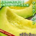 マスクメロン 2玉 合計約2.5kg 贈答品 静岡県産 温室栽培 香り豊かで濃厚な甘さ!国内を代表する高級フルーツ
