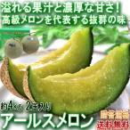 アールスメロン 青肉メロン 計約4kg 2玉入り 熊本県産 茨城県産 贈答品 マスクメロンと同一品種 長年親しまれた抜群の味!温室で丁寧に育てたギフト果物