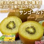 サンゴールドキウイ キウイフルーツ 約3kg 22〜33玉 ニュージーランド産 贈答規格 控えめな酸味と豊かな甘さ!世界有数のキウイ商社、ゼスプリが誇る抜群の味