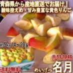 産地直送 名月 めいげつ 約10kg 25〜40玉 青森県産 赤特品 贈答規格 センサー選果済み 強い甘みと少ない酸味の青森りんご!