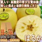はるか 蜜入り黄りんご 約3kg 8〜12玉入り 特秀品 山形県産 贈答品 JAさがえ西村山 高い糖度と酸味の少ない果肉!国内屈指の林檎産地で育った味わい抜群のリンゴ