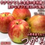 つがる 赤りんご 約5kg 12〜18玉 山形県産 酸味が少ない人気の赤林檎!抜群の美味しさをお届け