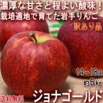 ジョナゴールド 赤りんご 約5kg 14〜18玉 岩手県産 訳