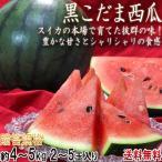 スイカ 黒小玉 約4〜5kg 2〜5玉入り 贈答規格 茨城県・熊本県産中心 色の濃い果皮と抜群の甘さ! 西瓜の大産地が誇る旬の味