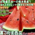 黒こだまスイカ 約8〜10kg 3〜8玉入り 贈答規格 熊本県産 色の濃い果皮と抜群の甘さ!西瓜の大産地が誇る旬の味