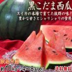 スイカ 黒小玉 約10kg 4〜8玉 訳あり 茨城県・熊本県産中心 色の濃い果皮と抜群の甘さ! お得な家庭用の西瓜