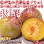 秋姫 あきひめ プラム 約1.5kg 8〜12玉 長野県産 贈答規格 強い甘みと酸味で濃厚な味!秋に美味しい晩生すもも