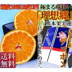 デコポン 約5kg 15〜24玉 熊本産 贈答用 JA熊本果実連 糖度13度以上保障 光センサー 認証 ギフト