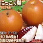 にっこり梨 約5kg 8〜16玉前後 訳あり品 千葉県産 テレビでも放送された人気の和梨!酸味の少ない高糖度のフルーツ