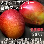 宮崎マンゴー メキシコマンゴー 2玉入り 秀品 贈答品 化粧箱入り 国産・海外産アップルマンゴー 味の違いを楽しめるお試し規格!