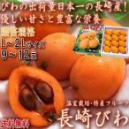 長崎びわ 茂木ビワ中心 温室枇杷 L〜2Lサイズ 9〜15玉 長崎県産 贈答規格・化粧箱入り やさしい甘さと豊富な栄養 ギフト最適な旬のフルーツ