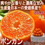 ポンカン 約3kg S〜Lサイズ中心 愛媛県産 秀品 贈答可能 控えめな酸味と手で剥ける果皮!香りと甘み豊かな愛媛自慢の柑橘