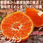 産地直送 ポンカン 約10kg 2S〜Mサイズ 愛媛県産 訳あり品 出荷量日本一の愛媛から直送!鮮度抜群の香り豊かな柑橘