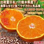 不知火みかん 小玉しらぬい 約5kg S〜2Sサイズ 熊本県・個人農家産 訳あり品 実測糖度14度の濃厚な甘さ!デコポンと同一品種の家庭用フルーツ