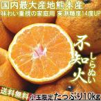 不知火 みかん しらぬい 10kg S〜2Sサイズ 熊本県 デコポン同種 訳あり品 実測糖度14度の濃厚な甘さ!デコみかん