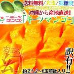 産地直送 キーツマンゴー 約2kg 沖縄県産 訳あり品 化粧箱入り 本場の沖縄でも珍しい緑玉マンゴー!濃厚な甘みにとろける食感の希少品種