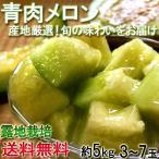 ※予約 青肉メロン 約5kg 熊本県産中心 アンデスメロン・タカミメロン・キスミー等 訳あり品 露地栽培品 旬の味わいをお届け!