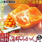 みかん 5kg 農業大賞受賞 JAあいち蒲郡 温室蜜柑 柑橘 愛知がまごおり 贈答用 センサー選別品 温州ミカンの王様