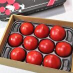 はるかエイト フルーツトマト 約1kg 8〜15玉 北海道産 贈答規格 JA北はるか 糖度8度保証の贈答トマト!ギフト最適な特産品