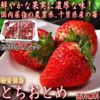 とちおとめ いちご 約300g×2パック 千葉県産 贈答規格 JAちばみどり中心 秀品 全国有数の農業県で厳選した高品質なギフト苺!鮮やかな果実に濃厚な味