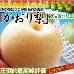 千葉県産『白井の梨 かおり』