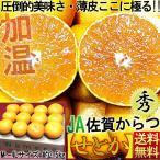 せとか 佐賀県産 唐津農業協同組合 秀品 2.5kg サイズ指定不可 清見×マーコット×アンコール交配種 贈答用 産地箱 柑橘類 タンゴール種
