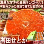 産地直送 みかん 有田せとか 約3kg L〜4Lサイズ 和歌山県産 贈答規格 化粧箱入り 最高峰の産地で育てた高級フルーツ!抜群の鮮度で濃厚な甘さ