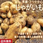 じゃがいも 男爵・とうや中心 約10kg 2L〜Mサイズ 千葉県産 大容量 様々なお料理に使えるお得な国産野菜!