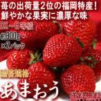 あまおう いちご 約300g×2パック 福岡県産 デラックス〜グランデ規格 贈答品 高級苺の代名詞!濃厚な味と美しさのブランド品種