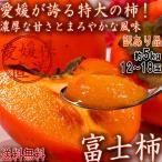 産地直送 富士柿 ふじがき 約5kg 大玉限定 愛媛県産 訳あり品 特大の果実にまろやかな甘さ!お得な価格の特産品フルーツ