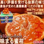 味まる蜜柑 約10kg L〜2Lサイズ 長崎県産 贈答規格 JAながさき西海 光センサー選果で糖度12度保障!長崎県が誇るブランド果物、西海みかん