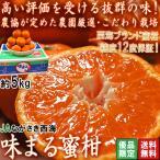 味まる蜜柑 約5kg 長崎県産 優品限定 JAながさき西海 光センサー選果で糖度12度保障!長崎県が誇るブランド果物、西海みかん