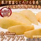 産地直送 ラ・フランス 西洋梨 約3kg 6〜9玉 山形県産 贈答規格 なめらかな食感と甘みのギフトフルーツ!鮮度抜群のラフランス