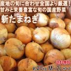 新たまねぎ 玉葱 約20kg 佐賀県産中心 大容量のお得な国産野菜!新鮮な旬の味をお届け
