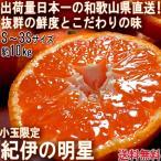 産地直送 紀伊の明星 温州みかん 約10kg S〜3Sサイズ 和歌山県産 小玉限定 蜜柑の出荷量日本一!和歌山で育てた抜群の鮮度と味わい