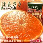はまさきみかん 麗紅 佐賀県産 5kg M〜4Lサイズ 秀品 産地箱入り JAからつ 柑橘類 ...