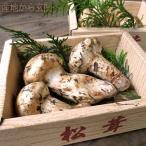 松茸 まつたけ カナダ産 約300g 4〜6本前後 簡易包装 海外産の中でも優れた香りと味わい、カナダ産の松茸!