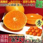 みかん れいこう 長崎 麗紅 2.5kg M〜3Lサイズ 秀品 産地箱 柑橘類 タンゴール は...