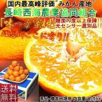味っ子 みかん 長崎県産 約5kg 秀品 JA長崎西海 糖度13度以上保障 糖度センサー認証 贈答最適 厳選品質