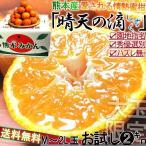 みかん 熊本県産 晴天のしずく 2kg箱 蜜柑 大玉 贈答好適 2L〜Mサイズ 滴 雫 温州ミカン 2箱注文で1キロおまけ5kg納品 3箱注文で4キロおまけ10kg納品