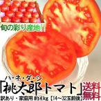 トマト 産地厳選 千葉 とまと 箱 4kg 桃太郎 訳あり 家庭用 自宅用 手作り お特用 大容量 業務用