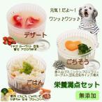 犬用 栄養満点セット 煮干しムース 玄米リゾット イチゴムース ディナー  無添加 フード 手作り食 あすつく  6480円以上送料無料 帝塚山WANBANA