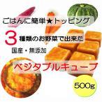 3種の野菜 でできた 国産 ベジタブル キューブ 500g 小分けトレー 入り 手作り食 材料 簡単 トッピング 無添加 酵素 帝塚山 WANBANA 5000円以上 送料無料
