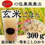 お米 発芽 玄米 300g 手作り食 材料 アレルギー トッピング ごはん 犬用 帝塚山WANBANA 6480円以上 送料無料