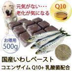 犬 まるごと 煮  国産 イワシ ペースト 乳酸菌 &
